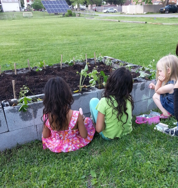 These little ladies drew flowers and butterflies around the garden bed with chalk.