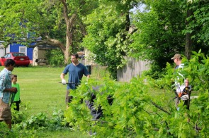 Tree cutting by Baseball backstop
