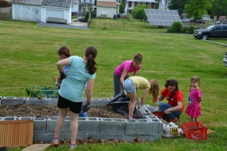 Free Community Garden Planting